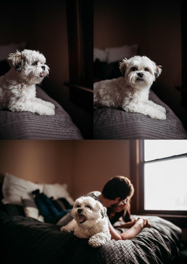 Chelsea Kyaw Photo - Pape Quad Cities Family Photographer-13